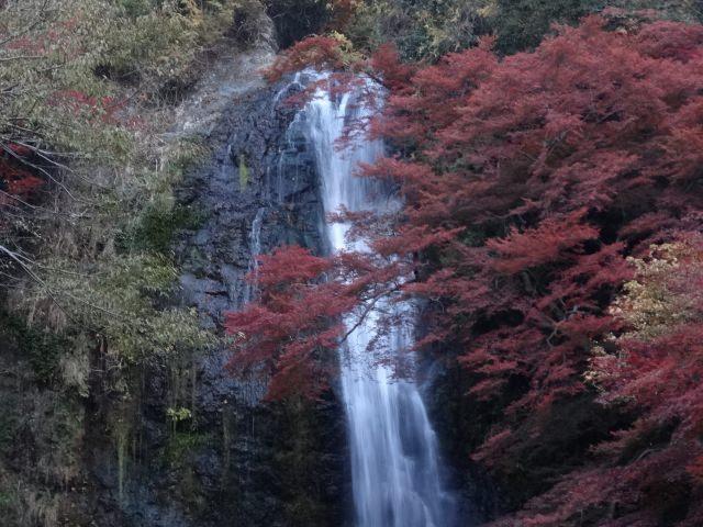 7. 日本の滝百選にも選ばれた「箕面の滝」
