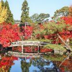 紅葉が美しい!七不思議の魅惑を持つ京都の観光名所「禅林寺永観堂」の見どころを徹底解説!