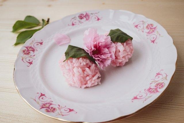 日本のお菓子、和菓子体験「まちだ庵 若葉堂」