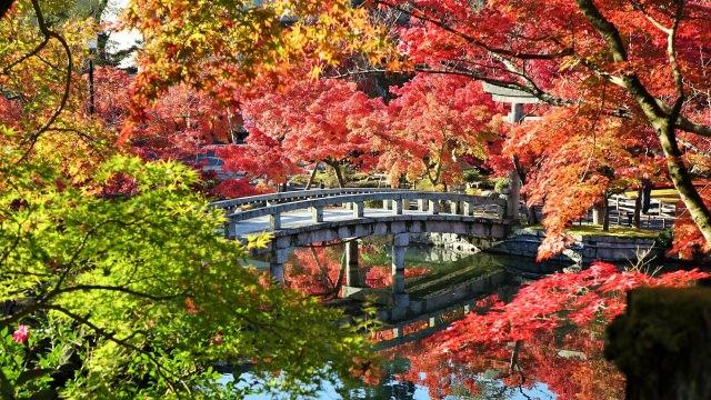 「禅林寺永観堂」の特徴と見どころ