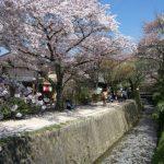 春の京都はここに行こう!おすすめ観光スポット・グルメを厳選紹介!