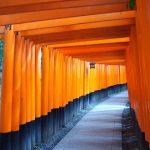 日本一人気の観光スポット伏見稲荷大社のおすすめの見どころを徹底解説!