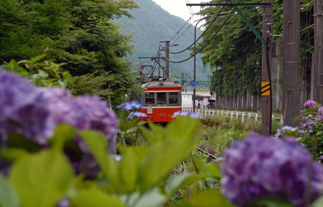 1.箱根登山鉄道で景色を味わう