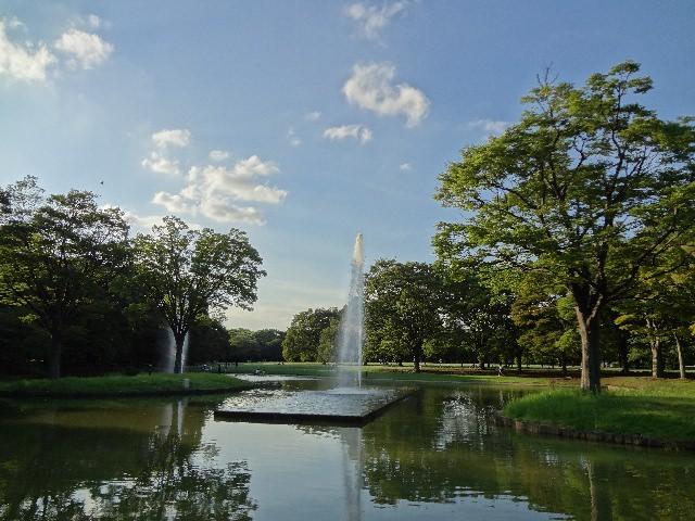 2. 都会の喧騒から離れた自然豊かな「代々木公園」