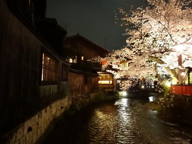 あなたはいつ行く?季節ごとに変わる京都のおすすめの魅力まとめ!