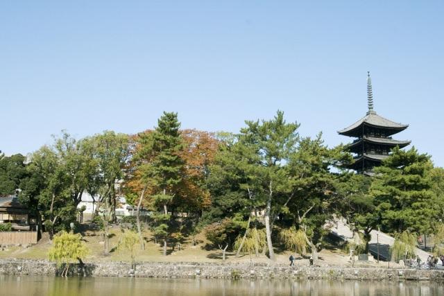 7. 秋の東大寺で紅葉を見よう!