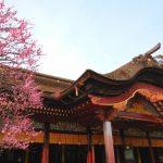 【定番から穴場まで】絶対に行きたい!福岡で人気のおすすめ観光スポットTOP10!