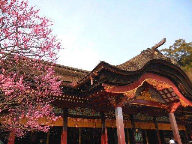 3. 福岡観光の代表格と言えば「太宰府天満宮」
