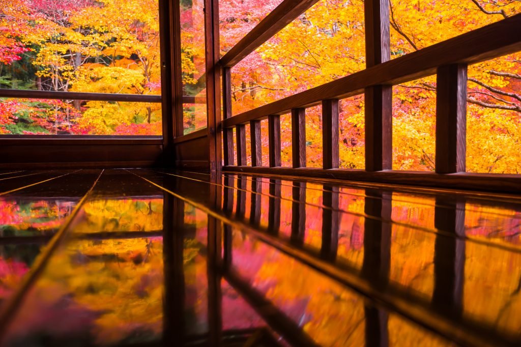 紅葉が美しい2016年秋限定!特別公開・特別拝観の京都のお寺・神社のお庭3選!