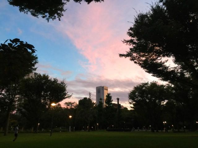 2. 新宿総鎮守熊野神社を有する「新宿中央公園」