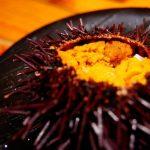 美味の宝庫!函館で必ず食べるべきおすすめご当地グルメ10選!