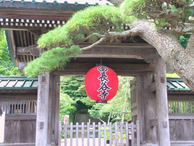 3. 一年を通して季節の花が楽しめる「長谷寺」