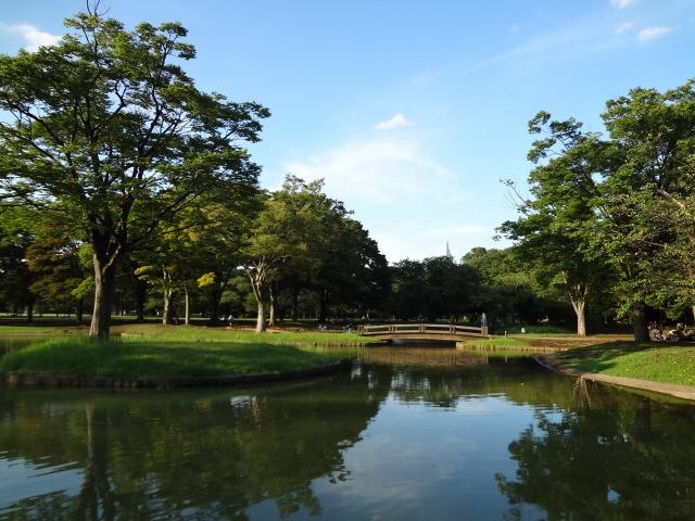 5. 9. 公園デートの定番!東京で緑溢れる観光地!「代々木公園」