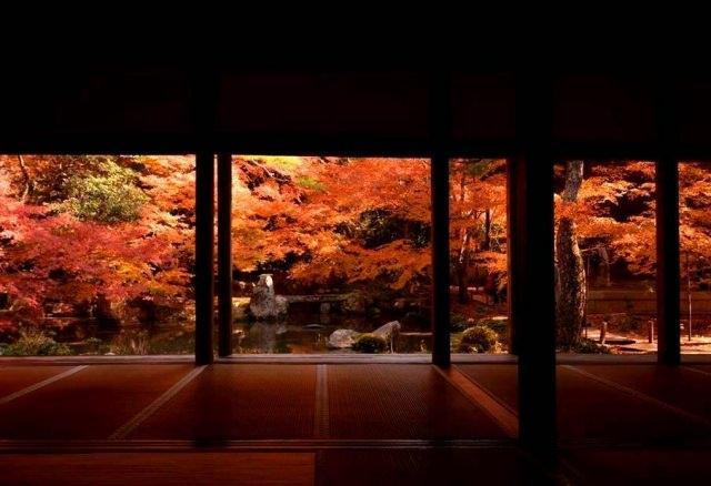 """10. 幻想的な""""床もみじ""""を見れる紅葉スポット「実相院」"""