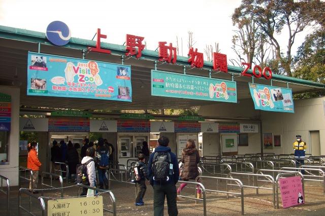 8. 東京の人気観光地!移動が多いため歩きやすい服装で!「上野動物園」