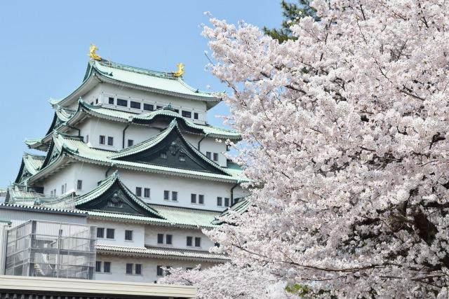 1. 名古屋の誇る桜の花見名所!「名古屋城」
