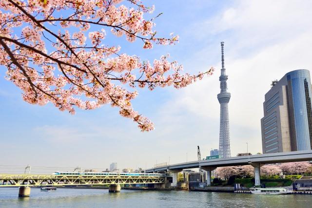 10. 朝に行ってゆっくりと東京の町を眺めませんか?「東京スカイツリー」