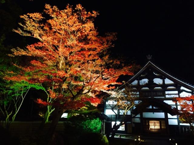 3. 水面に映った紅葉景色は幻想的「高台寺」