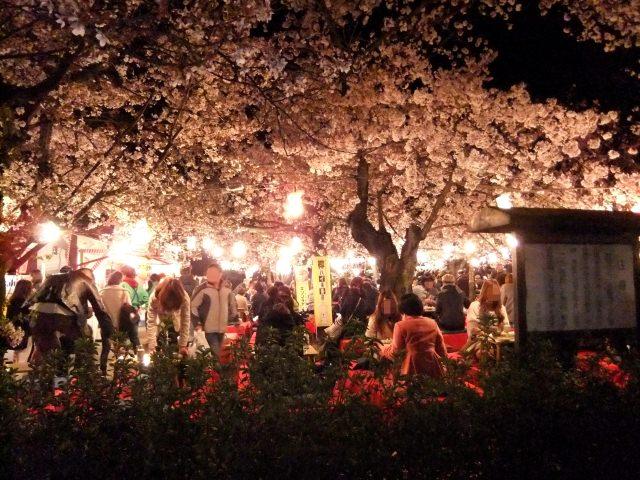 4. 桜の名所として知られる「円山公園」