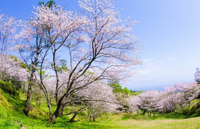4. 日本のダイヤモンドヘッド。「魚見岳」