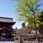 絶景に会いに行こう!阿蘇の魅力満載の人気のおすすめ観光スポットランキング10選!