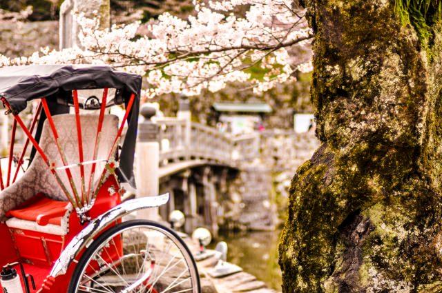 4. 浅草観光の際にはぜひ!短時間で浅草を楽しめる「人力車」