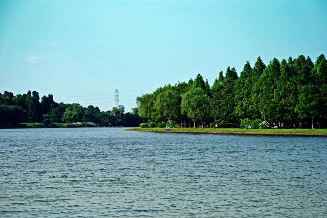 9. 東京の下町葛飾区にある自然豊かな観光スポットへご両親と!「水元公園」