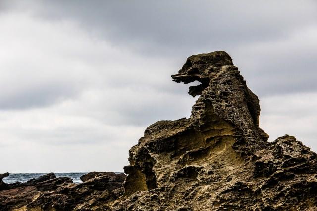 3. 夕陽に向かってゴジラが叫んでいる!?秋田では有名観光スポット「ゴジラ岩」