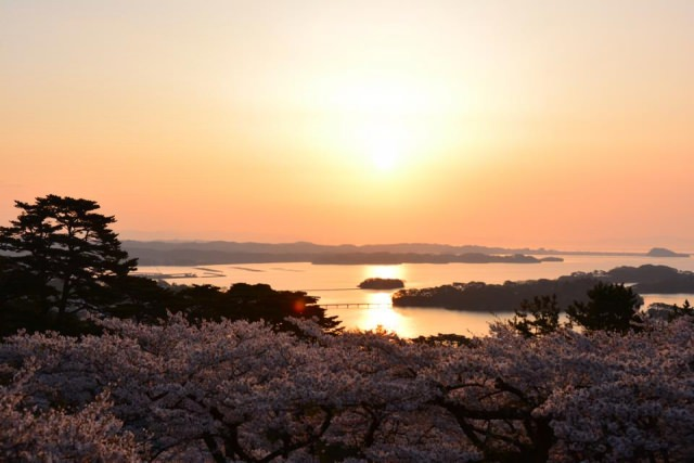 4. You shouldn't ignore this spot on your holiday to the Miyagi prefecture. [Matsushima]