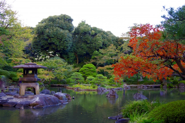 1. Speaking of the autumnal tints in Tokyo!   Let's stroll in the magical garden! [Rigugien]