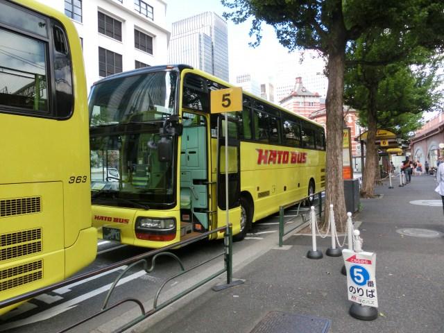 7. 東京観光の定番!夕方からのコースも豊富!「はとバス」
