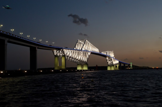 9. ロボットの世界に迷い込んだかのような近未来感!東京の夜景といえば「東京ゲートブリッジ」