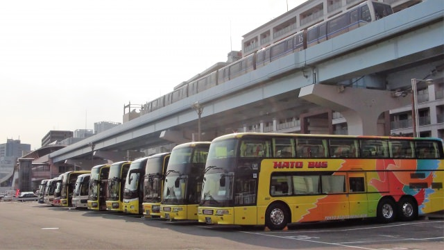 1. 短時間で東京観光を満喫できる!「はとバス」