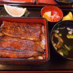 嵐山でうなぎを食べるならココ!厳選おすすめの老舗の名店10選!