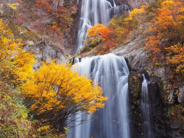 8. 日本の滝百選で第2位に選ばれた滝!その美しさに圧倒「安の滝」