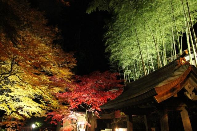 5. ちょっと一休みにおすすめ!仙台の歴史的なスポットで紅葉を「瑞鳳殿」