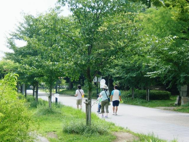 4. 大阪城周辺で早朝ランニング!「大阪城公園」