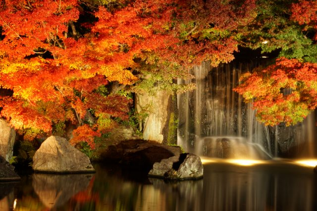 10. 姫路にある日本の趣きを感じる紅葉スポット「好古園」
