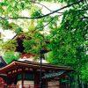 和歌山の見所はココ!絶対に行くべきおすすめな人気観光スポット10選!