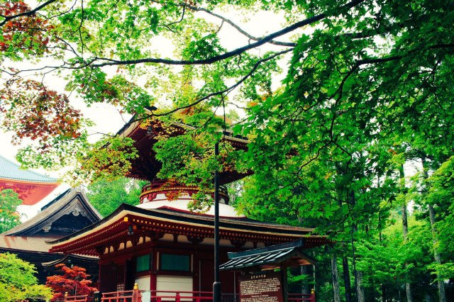 4. The sightseeing spot where you can feel nature all around you in the Wakayama prefecture! [Koyasan]