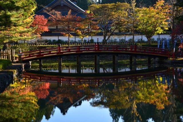 3. 天空の聖地。関西の紅葉スポットの定番といえば「高野山」