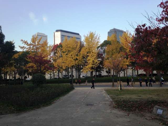 7. 大阪のシンボル!紅葉景色も美しい「大阪城公園」