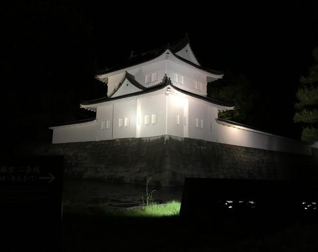 3. 春には桜のライトアップが楽しめる!京都夜の観光スポット「二条城」
