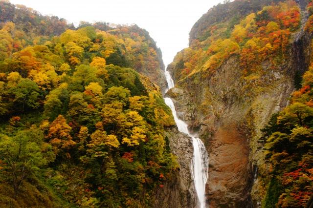9. 日本で一度は訪れたい滝の一つ。富山が誇る絶景「称名滝」