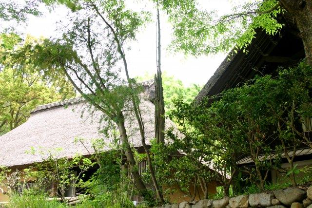 10. 日本の伝統的な情景を味わいながら過ごす。香川の人気観光地「四国村」