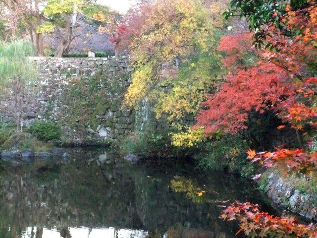 7. 和歌山県の中心にあるランドマーク。紅葉も絶景「和歌山城 紅葉渓庭園」
