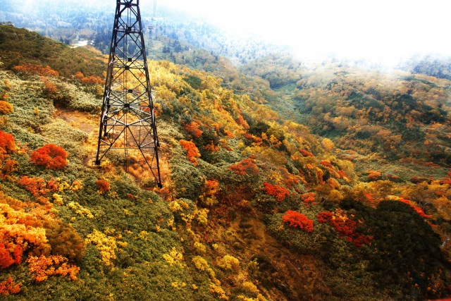 1. 日本で一番早く紅葉が見られるスポット「大雪山」
