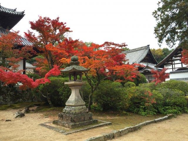 Autumn Foliage Spot with a Long History in Okayama, Hofuku-ji Temple