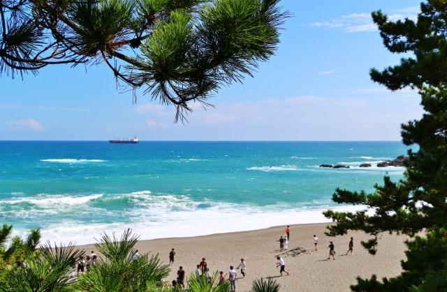 82. 【高知県】日本有数の月の名所を観光してみませんか?「桂浜」