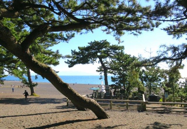 46. 【静岡県】日本を代表する絶景スポットは静岡県に存在した!「三保の松原」